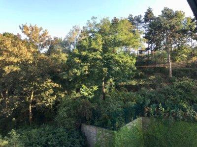 Vues des salles de formation : le parc André Malraux